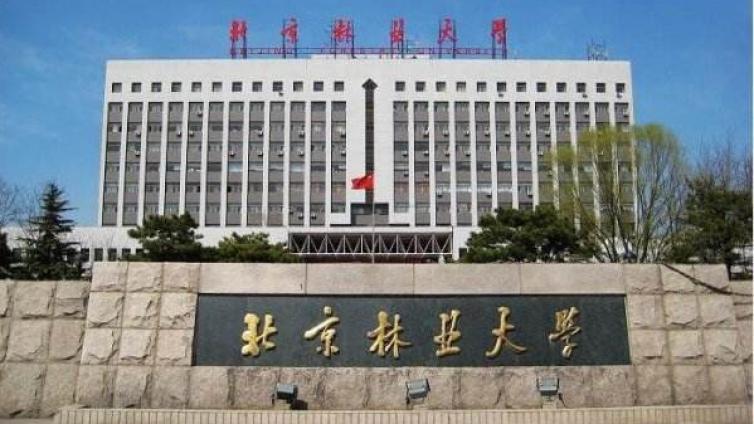 2021年北京林业大学应用心理专硕招生情况简析